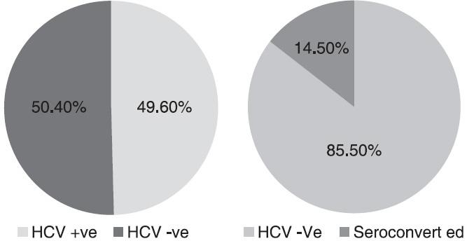 peer reviewed articles on hepatitis b