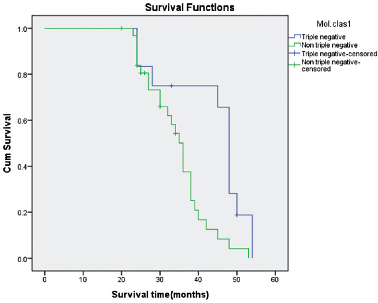 Figure� 4: Kaplan–Meier overall survival for patients with triple-negative tumors.